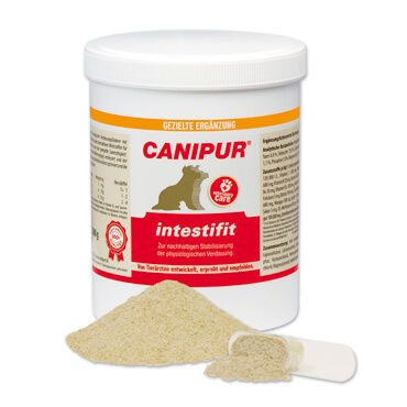 CANIPUR - intestifit