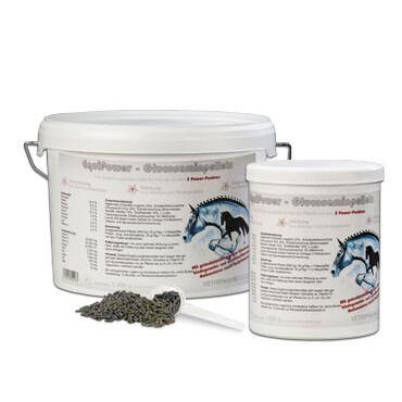 EquiPower - Glucosaminpellets